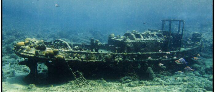 Tugboat Curacao Divers Deutsche Tauchschule Tauchen Tauchurlaub Urlaub entspannen Unterwasser Non Limit Freiheit selbstständig Karibik